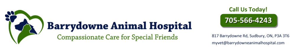 Logo for Barrydowne Animal Hospital in Sudbury, ON
