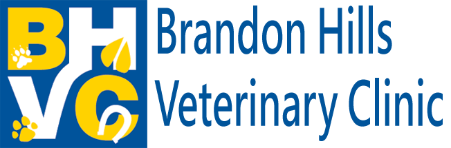 Logo for Brandon, MB Veterinarian Animal Clinic | Brandon Hills Veterinary Clinic