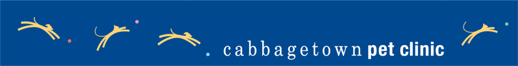 Logo for Cabbagetown Pet Clinic