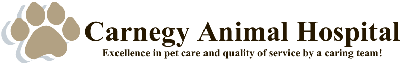 Logo for Carnegy Animal Hospital | Veterinarian in Halifax, Nova Scotia