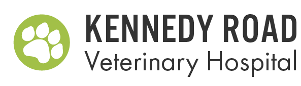 Logo for Kennedy Road Veterinary Hospital Brampton, Ontario