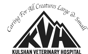 Logo for Kulshan Veterinary Hospital Lynden, Washington
