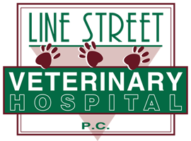 Logo for Line Street Veterinary Hospital