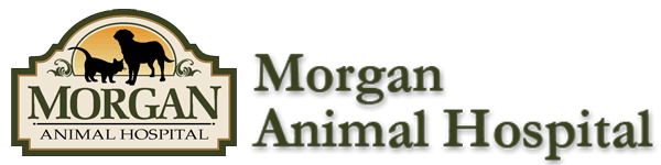 Logo for Morgan Animal Hospital &#8211; Niagara Falls Veterinary Clinic
