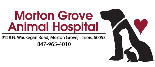 Logo for Morton Grove Animal Hospital