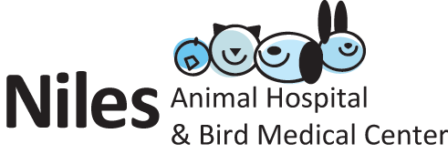 Logo for Niles Animal Hospital &amp; Bird Medical Center