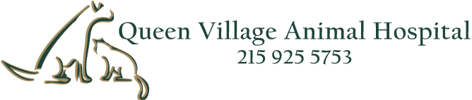 Logo for Queen Village Animal Hospital &#8211; Veterinary Clinic Philadelphia