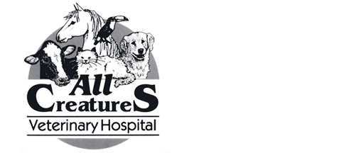 Logo for Seneca Falls, NY Veterinarian Animal Clinic | All Creatures Veterinary Hospital