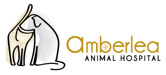 Logo for Amberlea Animal Hospital  – Veterinary Clinic in Pickering, Ontario