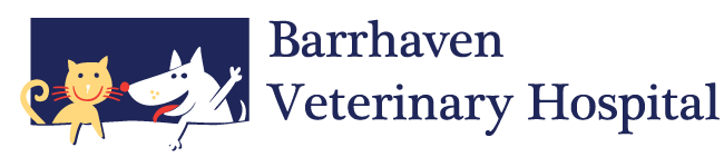 Logo for Barrhaven Veterinary Hospital – Animal Hospital in Ottawa
