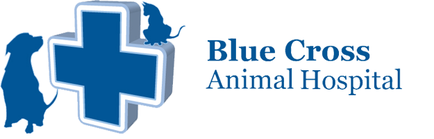 Logo for Blue Cross Animal Hospital in Hamilton, ON