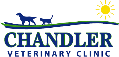 Chandler Veterinary Clinic