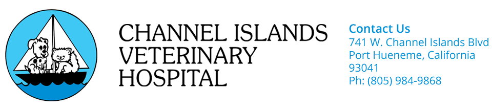 Logo for Channel Islands Veterinary Hospital Port Hueneme, California