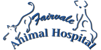 Logo for Veterinarians in Rothesay |Fairvale Animal Hospital