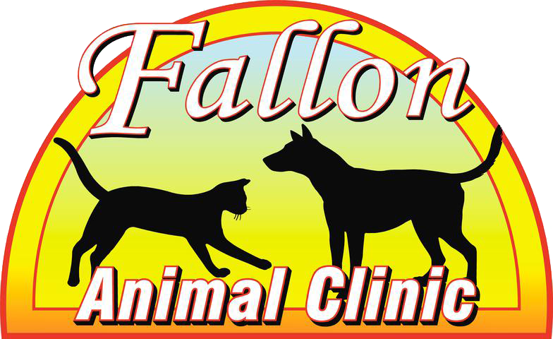 Fallon Animal Clinic