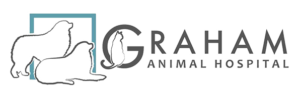 Veterinarians in Hillsburgh, ON | Graham Animal Hospital