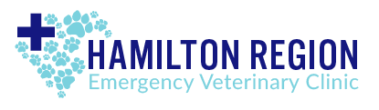 Veterinarians in Hamilton, ON | Hamilton Region Emergency Vet Clinic