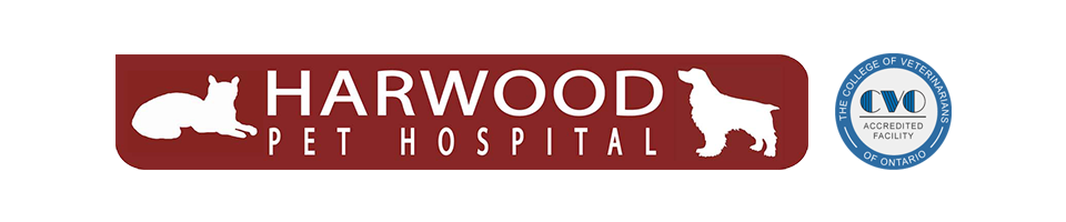 Logo for Veterinarians in Ajax  | Harwood Pet Hospital