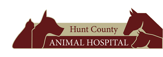Logo for Veterinarians Campbell | Hunt County Animal Hospital
