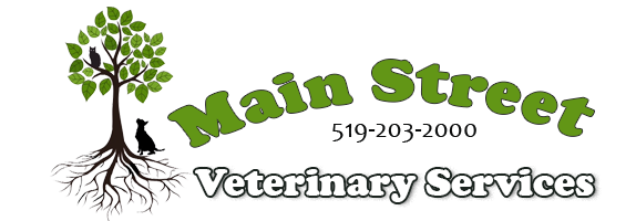 Logo for Veterinarians London, Ontario | Main Street Veterinary Services