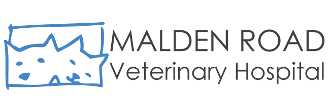 Logo for Malden Road Veterinary Hospital Windsor, Ontario