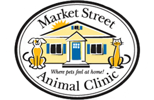 Veterinarians in Leesburg | Market Street Animal Clinic
