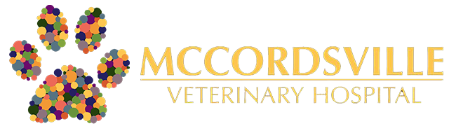Logo for McCordsville Veterinary Hospital
