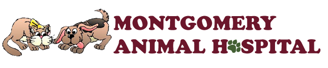 Logo for Montgomery, AL Veterinarian Animal Clinic | Montgomery Animal Hospital