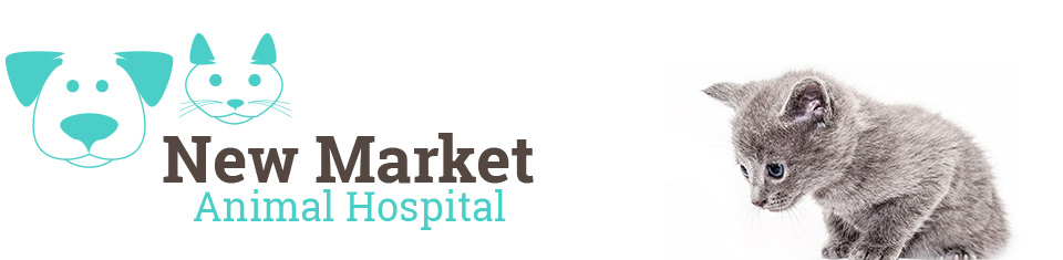 Logo for New Market Animal Hospital