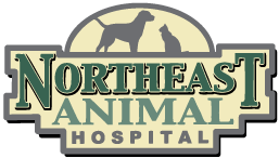 Logo for Northeast Animal Hospital – Ridgeland Mississippi