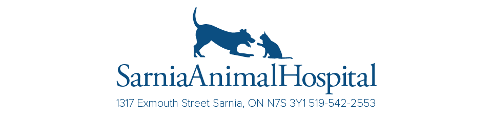 Logo for Sarnia Animal Hospital Sarnia, Ontario