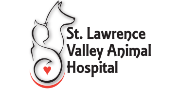 Logo for Veterinarians in Cornwall  | St. Lawrence Valley Animal Hospital