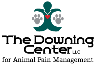 Logo for Pain center and rehabilitation center and animal hospital in Windsor | The Downing Center for Animal Pain Management
