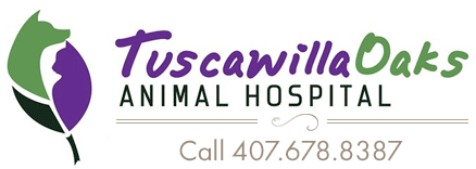 Logo for Veterinarians in Oviedo, Florida | Tuscawilla Oaks Animal Hospital