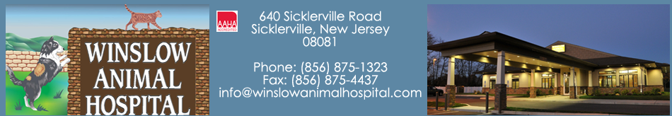 Logo for Winslow Animal Hospital | Your Animal Hospital in Sicklerville New Jersey